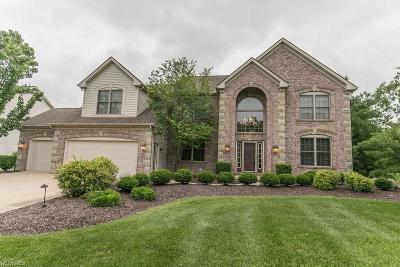 Strongsville Single Family Home For Sale: 21230 Greenfield Pl