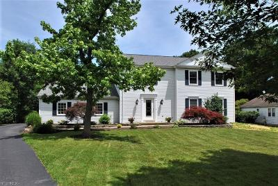 Geauga County Single Family Home For Sale: 116 Spring Dr