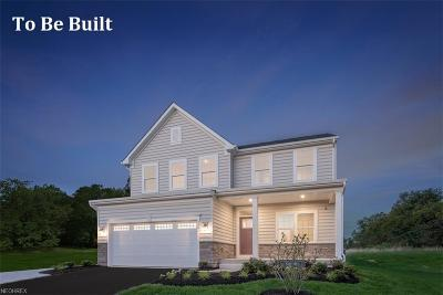 Aurora Single Family Home For Sale: 255 Lakeland Way