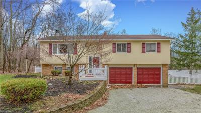 Single Family Home For Sale: 7820 Ravenna Rd