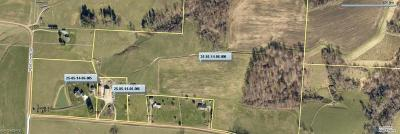 Muskingum County Farm & Ranch For Sale: 2040 Wesley Chapel Road