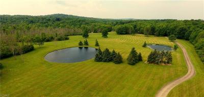 Chardon Single Family Home For Sale: 9220 Auburn Rd