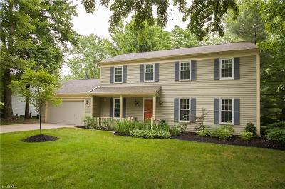 Cuyahoga County Single Family Home For Sale: 29195 Fall River Dr
