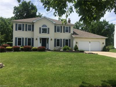 Cuyahoga County Single Family Home For Sale: 8820 Edgewood Dr