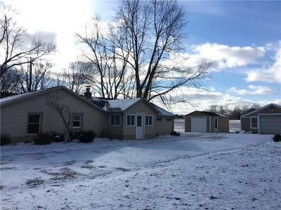 Canfield Single Family Home For Sale: 10678 Detwiler Rd