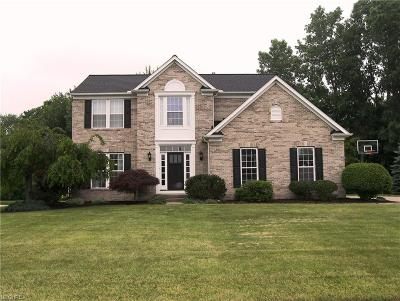 North Ridgeville Single Family Home For Sale: 34692 Plantation Pl