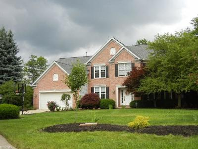 Strongsville OH Single Family Home For Sale: $349,000