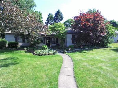 Girard Single Family Home For Sale: 500 Joan Ave
