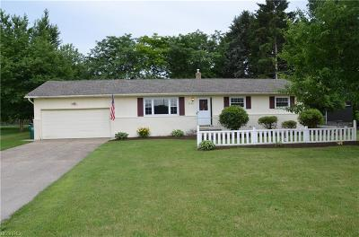 Lake County Single Family Home For Sale: 6110 Middle Ridge Rd