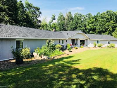 Valley City Single Family Home For Sale: 6089 Myrtle Hill Rd