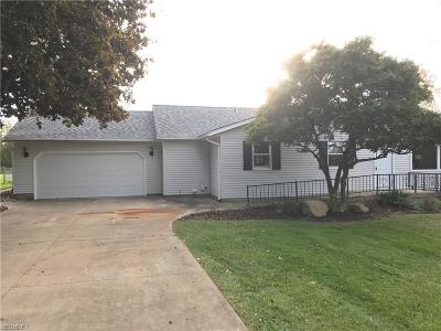 Medina County Single Family Home For Sale: 3979 Beach Rd