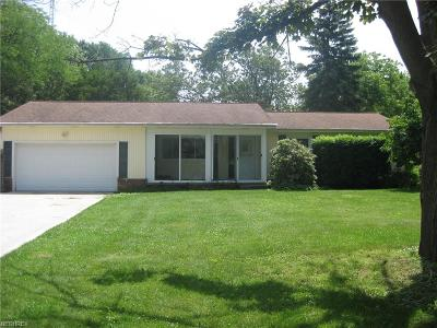 Painesville Township Single Family Home For Sale: 1082 Riverside Dr