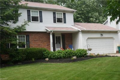 Mentor Single Family Home For Sale: 8471 Seaton Pl