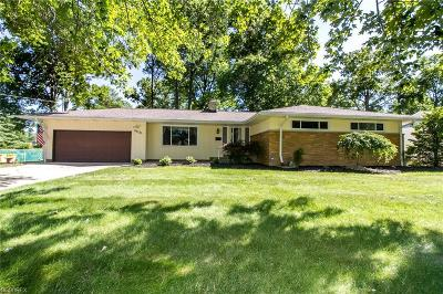 Wickliffe Single Family Home For Sale: 29730 Arthur Ave