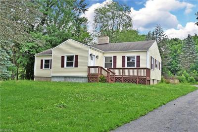 Warren Single Family Home For Sale: 1148 Niles Cortland Rd Northeast