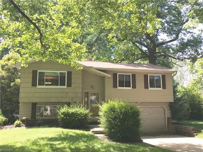 Lake County Single Family Home For Sale: 1802 Bathgate Ave