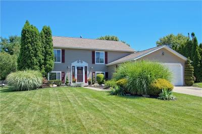 Twinsburg Single Family Home For Sale: 1645 Kasserine Ct