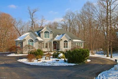 Geauga County Single Family Home For Sale: 8145 Wisteria Dr