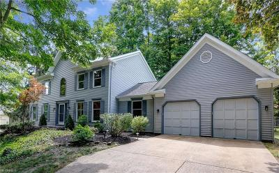 Solon Single Family Home For Sale: 32400 Miles Rd