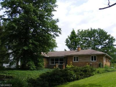 Royalton Single Family Home For Sale: 19901 State Rd