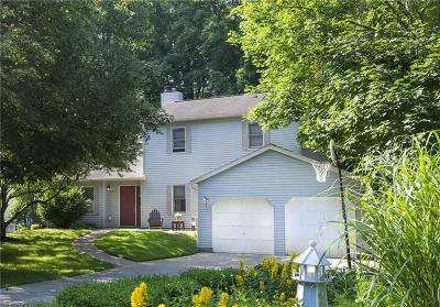 Chagrin Falls Single Family Home For Sale: 8383 Summit Dr