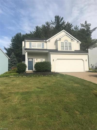 Chardon Single Family Home For Sale: 113 Pine Hollow Cir