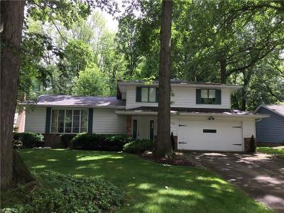 Solon Single Family Home For Sale: 33290 Cromwell Dr