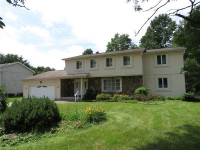 Youngstown Single Family Home For Sale: 4758 Michigan Blvd