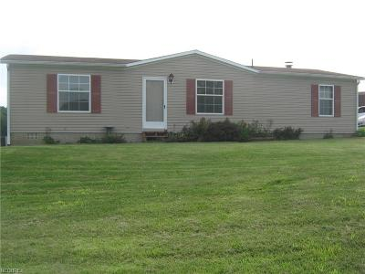 Muskingum County, Morgan County, Perry County, Guernsey County Single Family Home For Sale: 3838 Chandlersville Rd