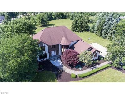Summit County Single Family Home For Sale: 4644 Newton Rd
