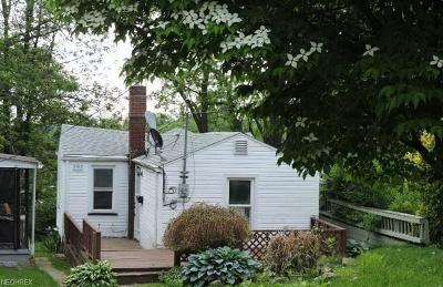 Single Family Home For Sale: 392 North Madison Ave