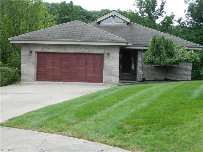 Seven Hills Single Family Home For Sale: 3203 Forest Overlook Dr