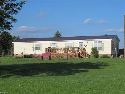 Garrettsville Single Family Home For Sale: 12902 State Route 88