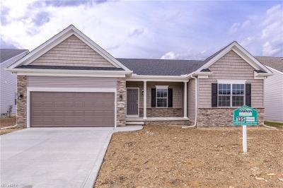 Painesville Township Single Family Home For Sale: Sl 4 Ava June Dr