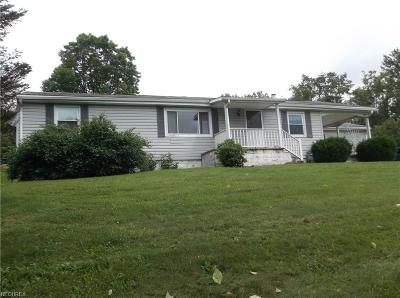 Byesville Single Family Home For Sale: 59087 Marietta Rd