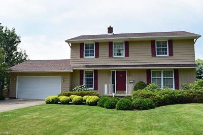 Wickliffe Single Family Home For Sale: 30191 Rickey Ln