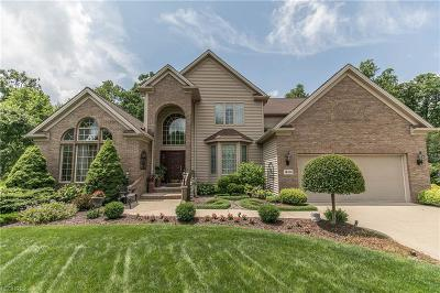 Strongsville Single Family Home For Sale: 16114 Heatherwood Ct