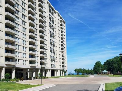 Bratenahl Condo/Townhouse For Sale: 1 Bratenahl Pl #711