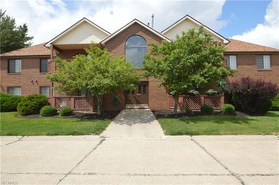 Broadview Heights Condo/Townhouse For Sale: 8671 Scenicview Dr #B203
