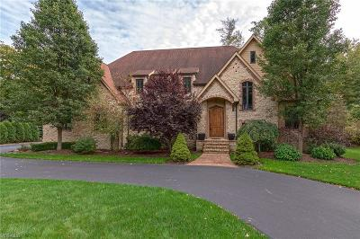 Chagrin Falls Single Family Home For Sale: 17520 Lakesedge Trl