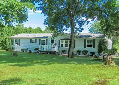 Youngstown Single Family Home For Sale: 5235 Kirk Rd