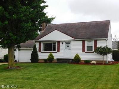 Struthers Single Family Home For Sale: 592 Creed St