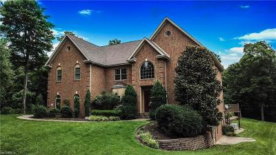 Vienna Single Family Home For Sale: 445 Millstone