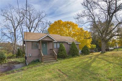 Broadview Heights Single Family Home For Sale: 8553 Broadview Rd