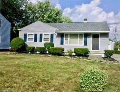 Struthers Single Family Home For Sale: 438 10th St
