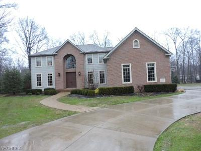 Single Family Home For Sale: 1090 Eagle Trace St Northeast
