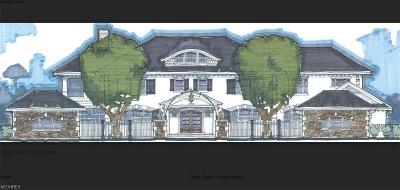 Avon Lake Single Family Home For Sale: 33834 Lake Rd