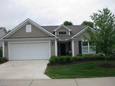 Brunswick Single Family Home For Sale: 5254 Spruce Pointe Ln