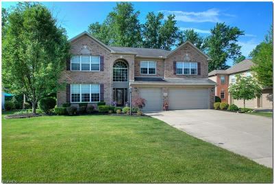 Westlake Single Family Home For Sale: 31041 Durham Dr