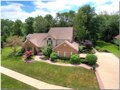 Westlake Single Family Home For Sale: 30827 Riviera Ln